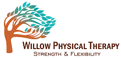 Sponsor Willow Physical Therapy